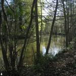 Argeville - l'Essonne
